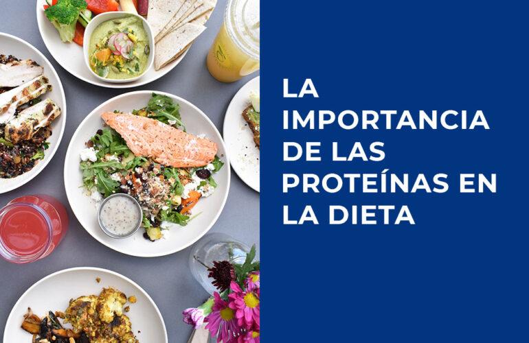 importancia proteinas